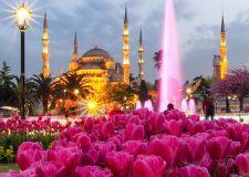 Фестивалът на лалето в Истанбул  и Желязната църква